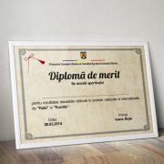 diploma_a4_merit